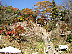 川見薬師寺